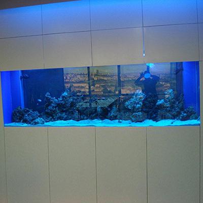 250cm deniz Akvaryumu