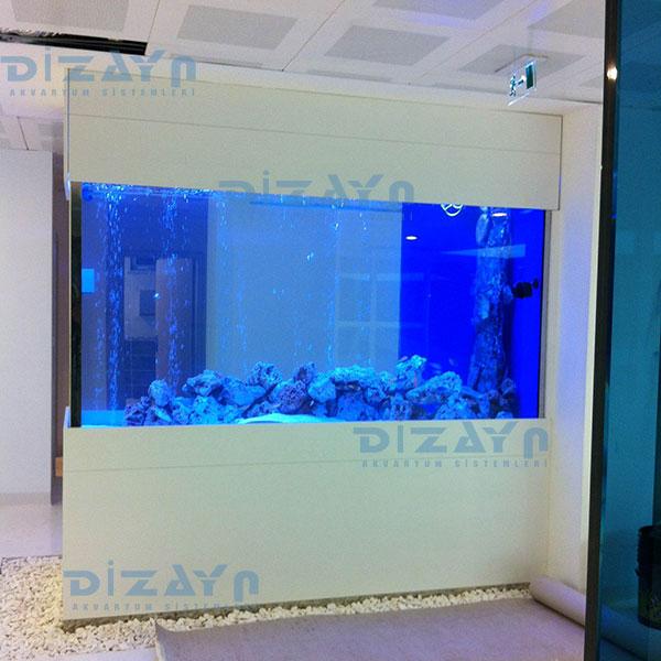 Tropheus  balıkları